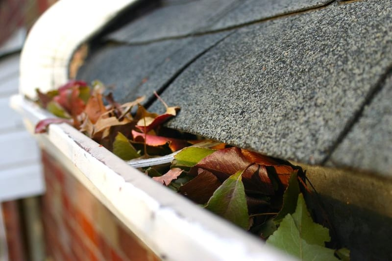 The 5 Common Roof Problems in Texas