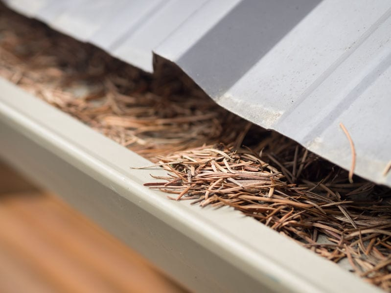How to Keep Your Gutters Leaf-Free and Protect Your Home from Water Damage