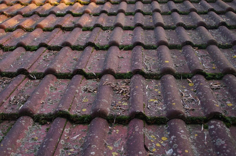 How Does Cleaning Your Roof Regularly Keep It from Being Damaged?