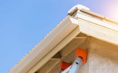 Why Is It So Important to Clean Your Gutters When You Buy a New Home?