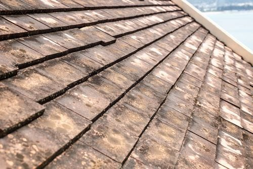 Signs It's Time To Clean Your Roof